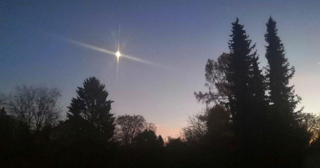 Bäume vor Himmel mit Stern